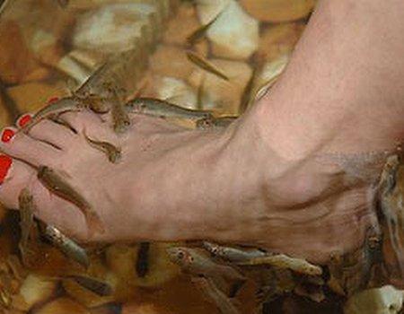 Appy feet
